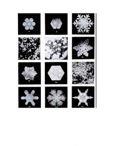 Identificar copos de nieve con lupa_Página_1