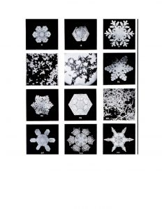 Medir copos de nieve_Página_1